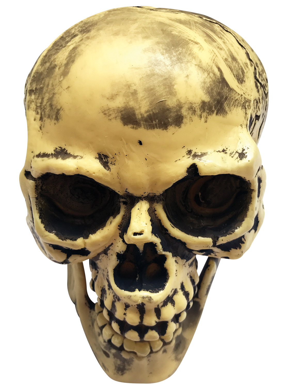 Διακοσμητική Αποκριάτικη Νεκροκεφαλή 26cm